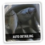 The Most Difficult Auto Detailing Ever